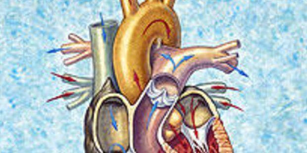 BeFunky_Grandi-ospedali-cardiologia_h_partb