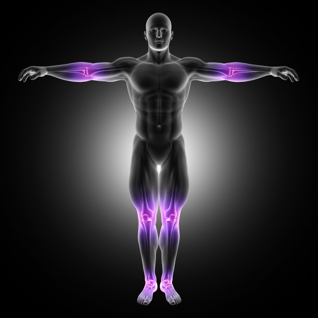3d-render-male-medical-figure-standing-pose-with-joints-highlighted_1048-6298